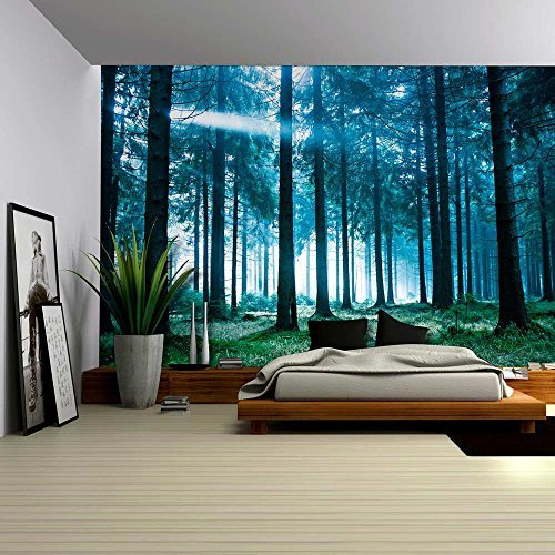 Blue Misted Forest with the Sun Peaking Through Wall Mural