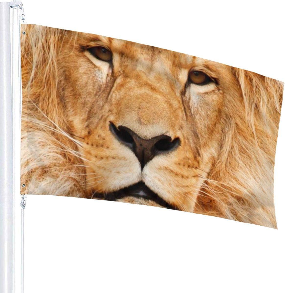 Tberj92 P Weather Resistant Animal Lion Garden Flag Family Flag 3 X 5 Ft Garden Outdoor