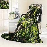 YOYI-HOME Digital Printing Duplex Printed Blanket Vatican Gardens and European Historic Landmark Cityscape Accessories Green Ecru Cream Summer Quilt Comforter /W69 x H47