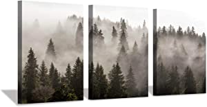 "Hardy Gallery Foggy Forest Picture Wall Art: Landscape Painting Misty Pine Trees Artwork Print on Canvas for Kids Rooms(16""x12""x3pcs)"