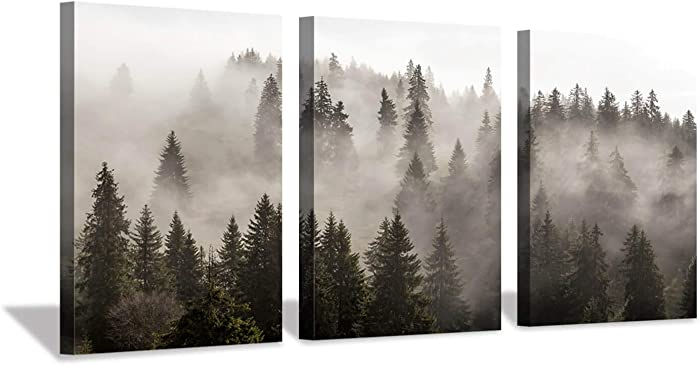 """Hardy Gallery Foggy Forest Picture Wall Art: Landscape Painting Misty Pine Trees Artwork Print on Canvas for Kids Rooms(16""""x12""""x3pcs)"""
