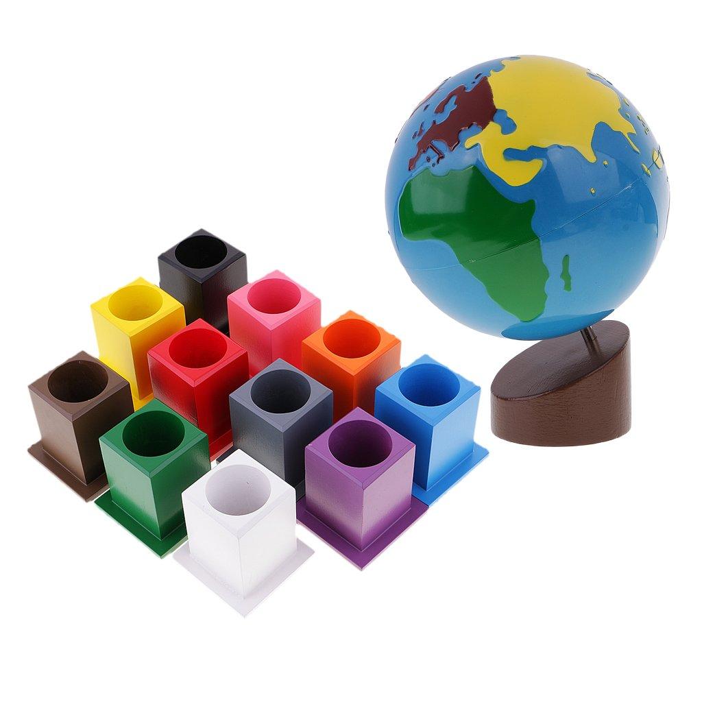 Fenteer Montessori 11 Buntstifthalter + Globus der Welt , Kinder Pädagogisches Spielzeug