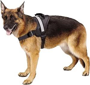 EXPAWLORER Big Dog Harness - Soft Reflective No Pull Black Size L 26-36 inch