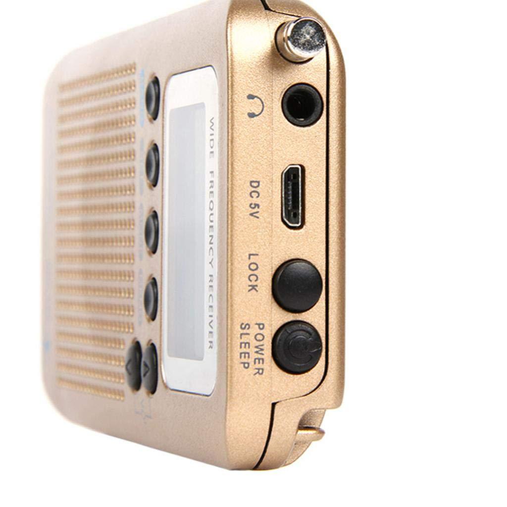 Schwarz H HILABEE Radio Receiver VHF Tragbarer Full Band Radio-Recorder mit LCD Anzeige