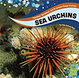 Sea Urchins (Faceless, Spineless, and Brainless Ocean Animals)