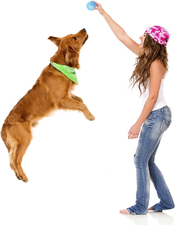 PRECORN LED Pelota para los Perros, Mascotas Bola Anti estrés Bola ...