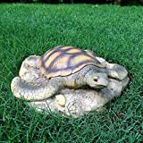 Life's A Beach Homestyles 11 in. Sea Turtle 3/D NaturalFinish Coastal Stepping Stone Review