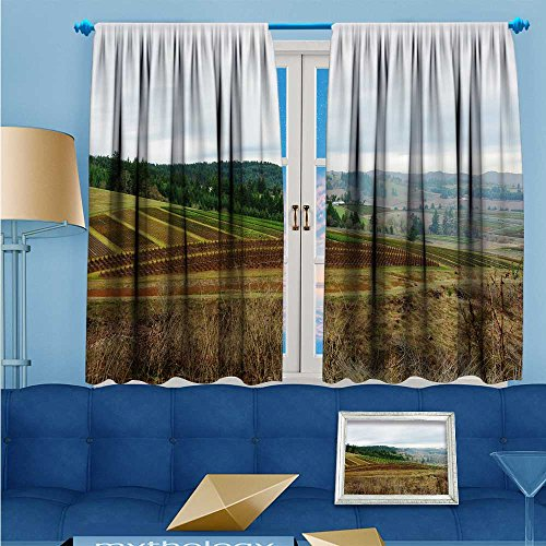 Panel Hacienda - L-QNHOME Kids Room Planets Curtains (2 Panels), hacienda Thermal Insulated Blackout Curtains with Star Prints, 55
