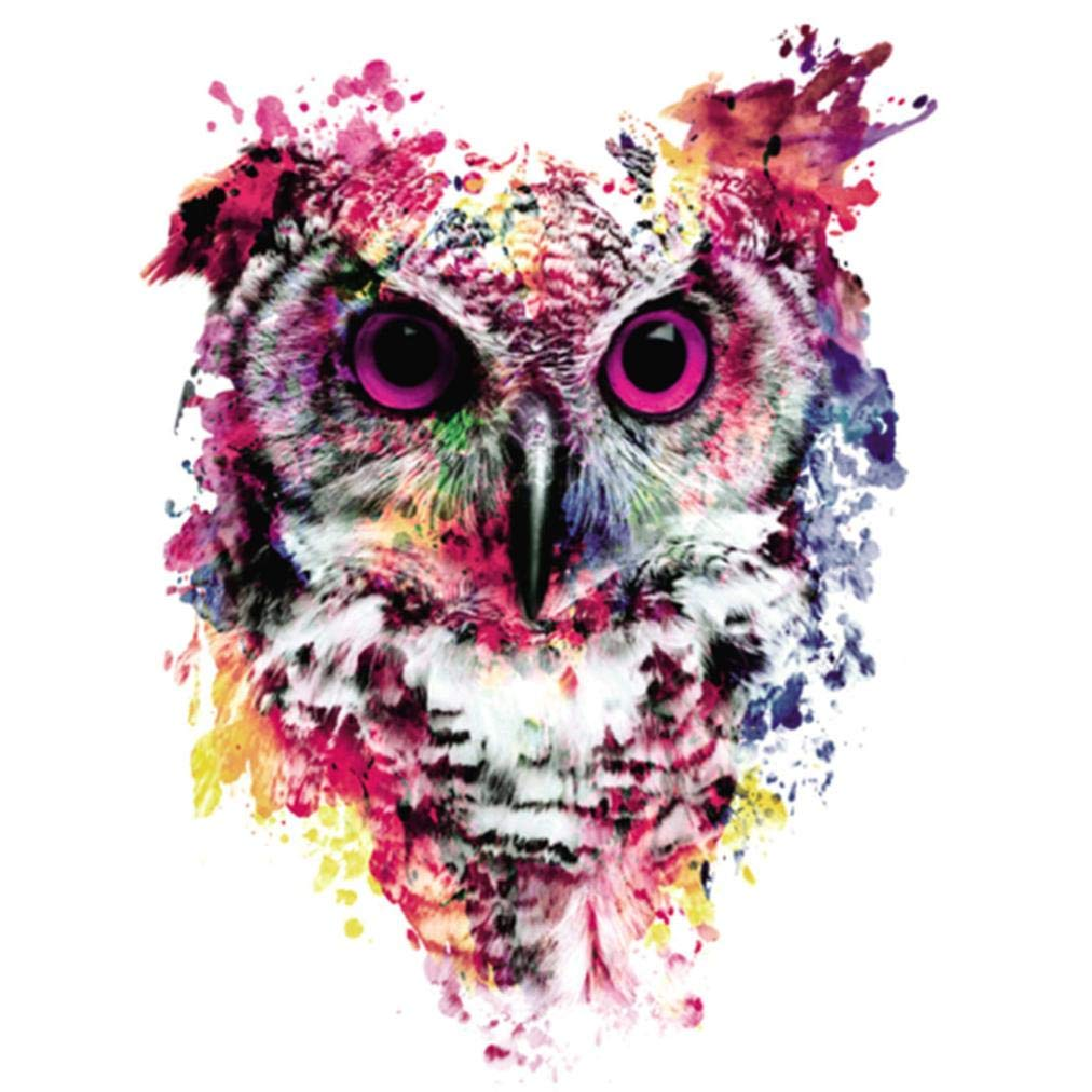 Oucan DIY 5D Diamond Painting Kit,Owl Paint Cross-stitch Diamond Painting Embroidery Diamond Painting Photo for Adults Home Decor(30 * 30cm) Oucan Painting