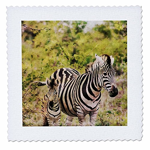 3dRose Andrea Haase Animals Illustration - Zebra Mother With Child Watercolor Illustration - 22x22 inch quilt square (qs_268155_9) by 3dRose
