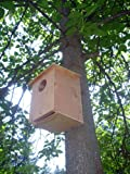 Barn Owl Nesting Box Review