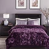 "Chanasya Faux Fur Bed Throw Blanket - Super Soft Fuzzy Cozy Warm Fluffy Beautiful Color Variation Print Plush Sherpa Microfiber Aubergine Blanket (92"" x 85"") - QUEEN/FULL"
