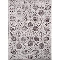 Home Dynamix Nicole Miller Kenmare Marian Area Rug, 31.5x47, Distressed Gray/Mauve