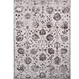 Home Dynamix and Nicole Miller | Kenmare Marian Area Rug | Polyester Indoor | Modern Style | Soft, Easy to Clean, Stain and Fade Resistant | Gray-Mauve, 8' x 10'
