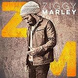Ziggy Marley -Digi-