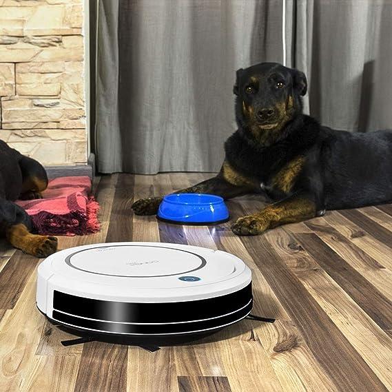 Cecotec Robot Aspirador Conga Serie 750. 800 Pa, Navegación Inteligente iTech Easy, Aspira, Barre, Friega y Pasa la Mopa, 90 min Autonomía: Amazon.es: Hogar