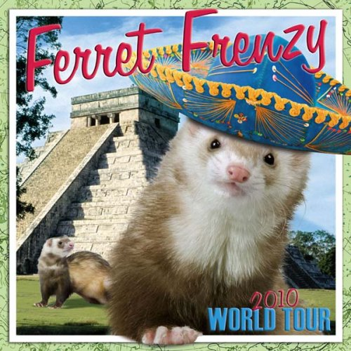 Ferret Frenzy: Around the World 2010 Wall Calendar