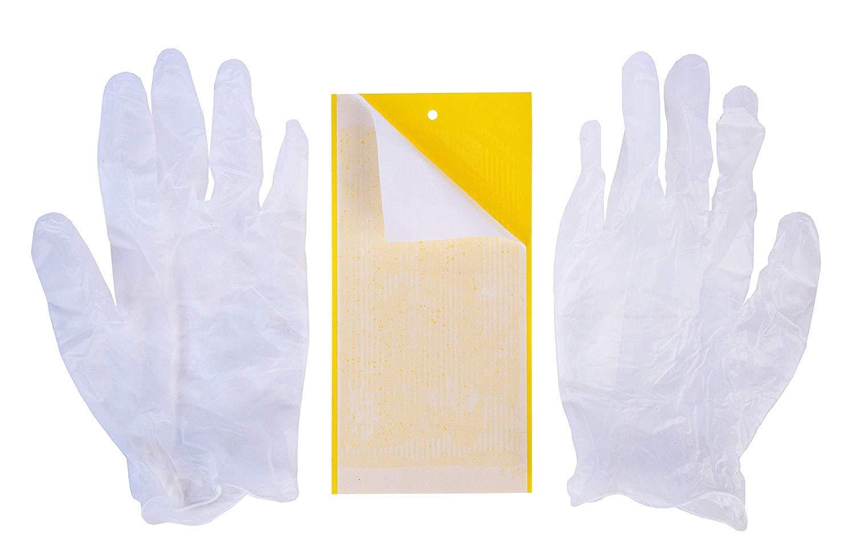 Pelle Tapis de Chanvre Substrat d/émarrage Urbalive KIT Complet : Lombricomposteur vers 250gr