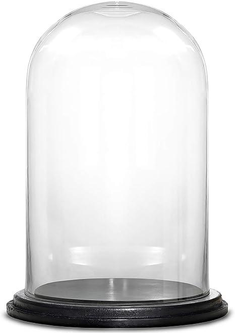 Amazon Com Cys Excel Glass Dome Cloche Bell Jar Terrarium Showcase Piece Decorative Display Case Home Kitchen