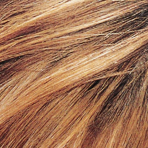 lor233al paris couleur experte hair color hair highlights