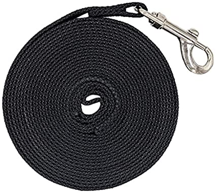 Justzon Cotton Web Dog Training Lead black