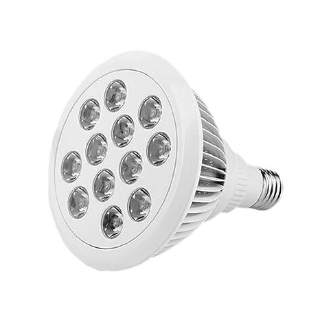 COOSA Nuevas Luces LED para Plantas, Bombillas de Crecimiento ...