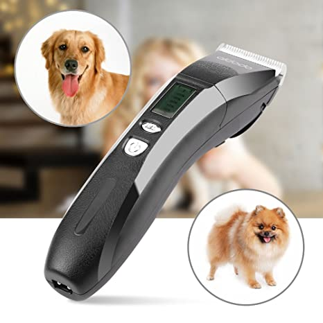 Cortapelos Perros Profesional Maquina Cortar pelo Perros Cortapelos para Mascotas Bajo Ruido y Vibración, Cuchilla de Ceramica, Negro