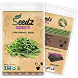 CERTIFIED ORGANIC SEEDS (Appr. 1,100) - Surrey Arugula - Arugula Seeds, Open Pollinated - Non GMO, Non Hybrid Vegetable Seeds - USA