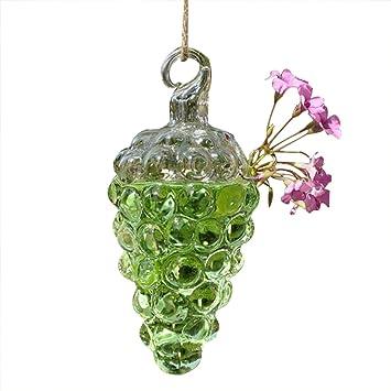 Hacoly Trauben Vase Glas Vaschen Flaschen Gross Glasflaschen
