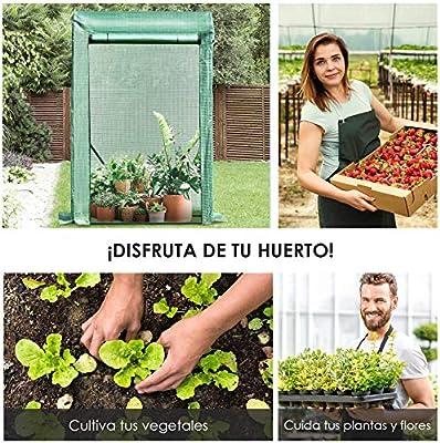 Outsunny Invernadero de Jardín Terraza para Huerto en Casa 100x50x150cm Color Verde Tubo de Acero y PE: Amazon.es: Jardín