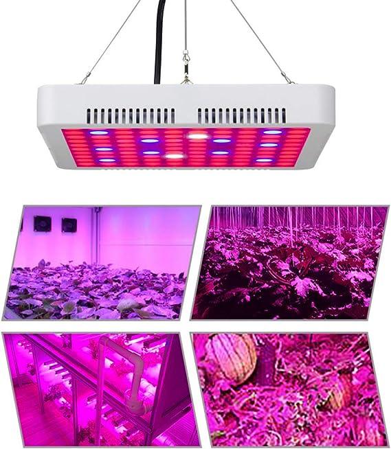 HENGMEI 300W Pflanzenlampe Pflanzenleuchte Pflanzenlicht Wachstumslampe Rot/&Blau Zimmerpflanzen Wuchslampen Innengarten Pflanze wachsen Licht 300W