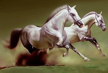 Javed Hashmi White Running Horse Painting