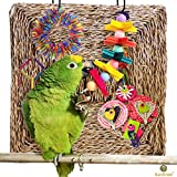 SunGrow Natural Seagrass Mat (Small) : Hand Woven, Safe & Edible for Hamsters, Rabbits, Parrot: Water Resistant & Non-Toxic Chew Toy Bed
