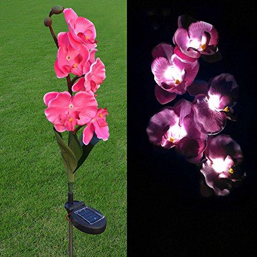 Flower Outdoor Lights - 8