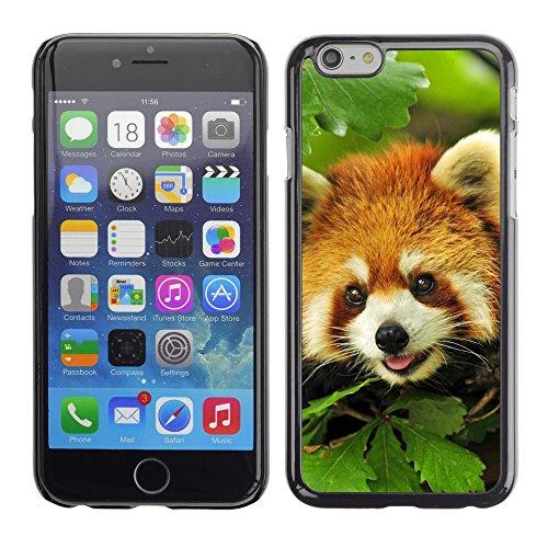 """Premio Sottile Slim Cassa Custodia Case Cover Shell // V00003759 panda rouge dans l'arbre // Apple iPhone 6 6S 6G PLUS 5.5"""""""