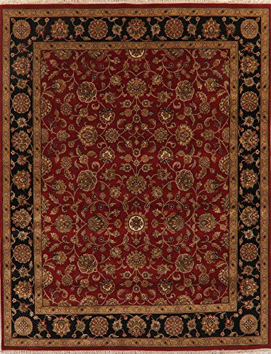 - All-Over Floral Burgundy and Black Agra Oriental Area Rug Hand-Knotted Wool 8X10