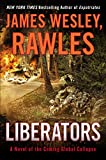 Liberators A Novel of the Coming Global Collapse Coming Collapse Series