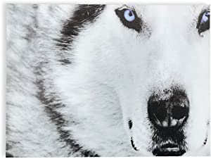 BANBERRY DESIGNS Wolf Canvas Wall Art - Close Up White and Gray Wolf Face with Blue Eyes - Wildlife Poster