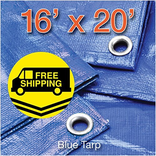 P-line 16' X 20' Multi-Purpose Blue Poly Tarp Cover 16-Ft By 20-Ft Tent Shelter Camping RV Boat Tarpaulin (Hardware Tent Mt)