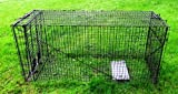 Humane Trap - Live Animal (Coyote, Stray Cat, Fox, Raccoon) Trap - 50''x24''x19''
