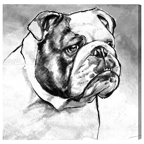 English Bulldog by Hatcher and Ethan x Oliver Gal