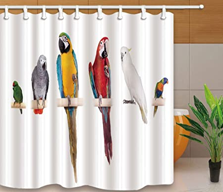YEDL Diseño Creativo Cortinas de Ducha Pájaros Parrot Prined Estilo Simple Mamparas de baño Tela Impermeable Cortina a Prueba de Moho con Ganchos 180 × 180Cm: Amazon.es: Hogar