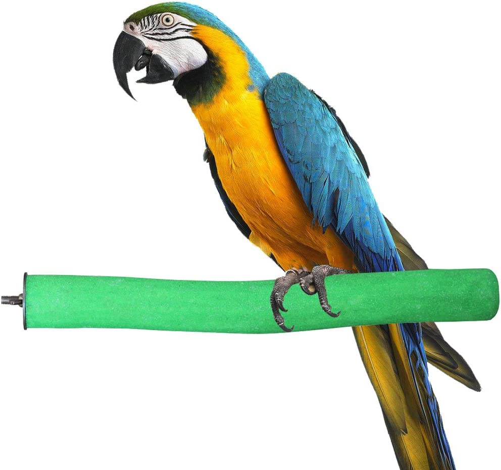 KINTOR Bird Perch Rough-surfaced Nature Wood Stand Toy Branch for Parrots Colors Vary