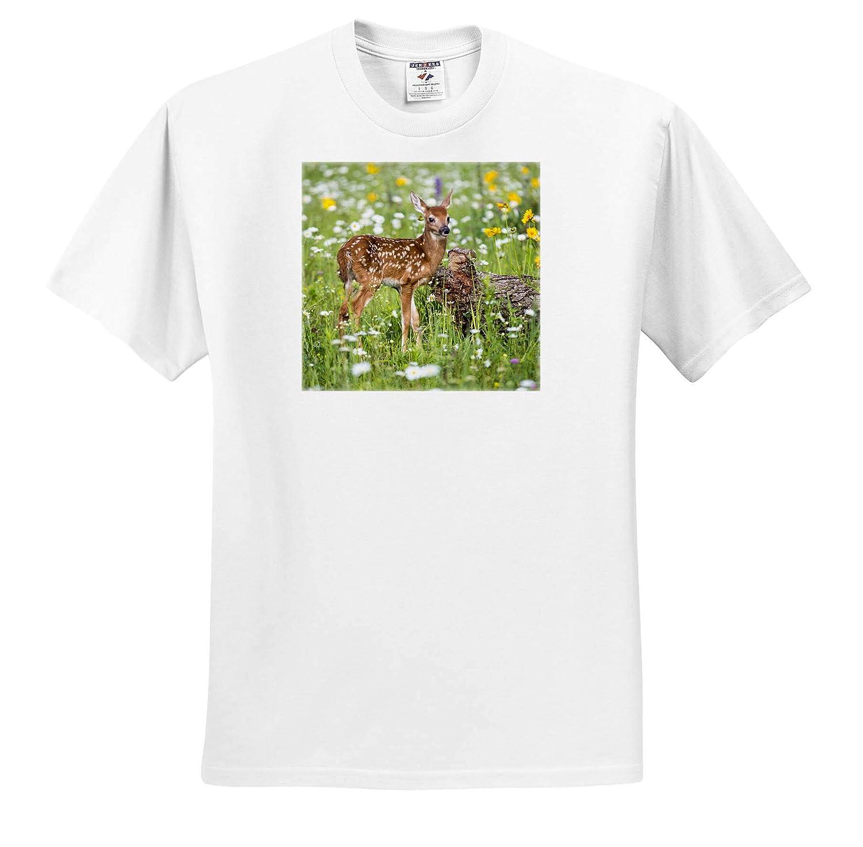 3dRose Danita Delimont Deer USA Fawn Amongst The Wildflowers ts/_314874 Adult T-Shirt XL Minnesota Sandstone