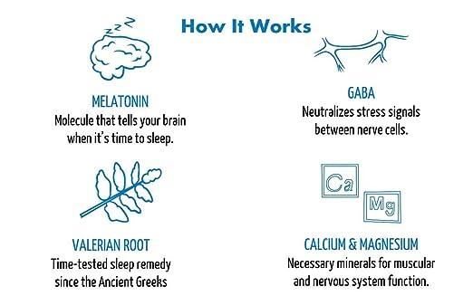 Amazon.com: Sleepyhead Sleep Aid Supplement, Melatonin and Valerian Root, Dutch Chocolate, 10-Pack: Health & Personal Care