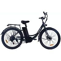 Velobecane Easy Noir - Vélo Électrique Mixte Adulte, Noir