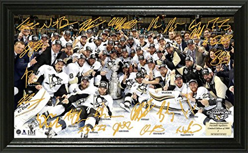 """NHL Pittsburgh Penguins 2016 Stanley Cup Champions Signature Rink, Gold, 24"""" x 16"""" x 4"""""""