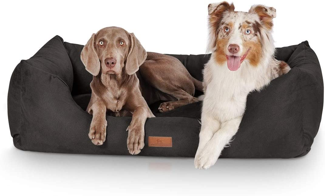Paniers pour chiens