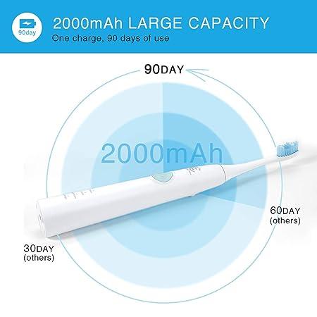 Cepillo de dientes eléctrico recargable, CoiTek Sonic Toothbrush, configuración de intensidad de 3 modos, con 2 cabezas de cepillo (blanco): Amazon.es: ...