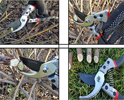 Professional Bypass Pruning Shears | Heavy Duty Garden Scissors with Non-Slip Handles | Garden Pruners, Clippers and Tree Trimmers with SK5 Sharp Blade | Bonus Gardening Gloves | Great as GlFT by GLC Star (Image #6)